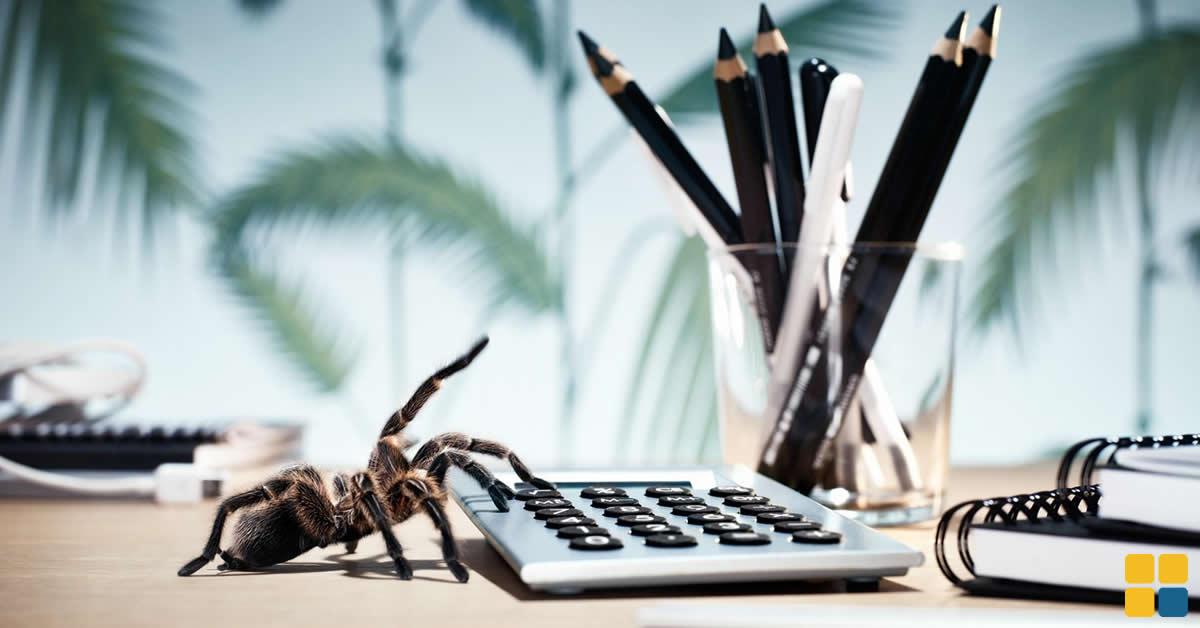 Escritórios de contabilidade sob risco